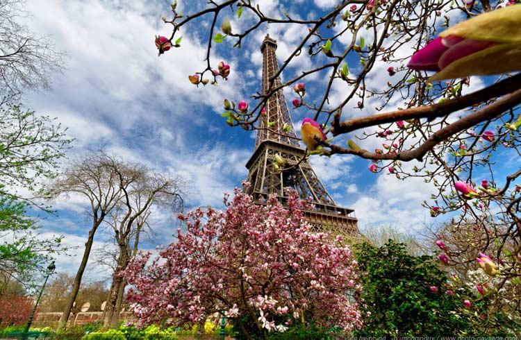 paris travel guide-Eiffel