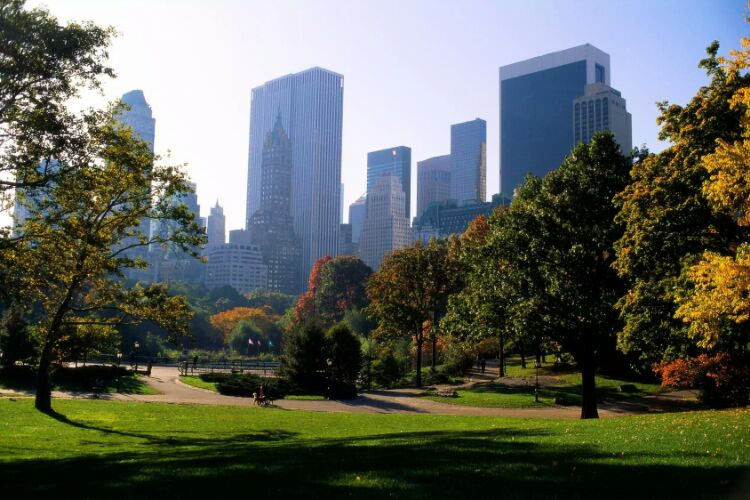 new york travel guide-central park