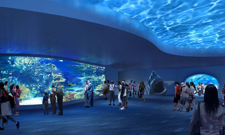 Ripleys-Aquarium-Of-Canada5